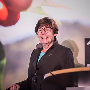 Annemieke Wijn, Rainforest Alliance