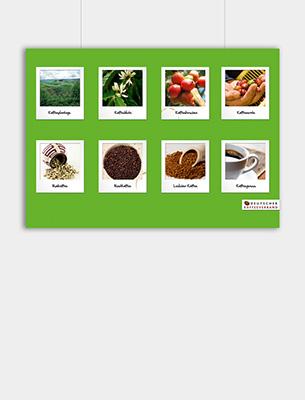 """Bild zu Poster: """"Verarbeitung"""" - Der Weg von der Pflanze zum fertigen Getränk"""