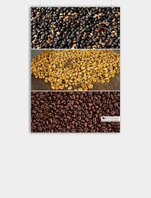 """Bild zu Poster: """"Verarbeitung"""" - Vom Roh- zum Röstkaffee"""